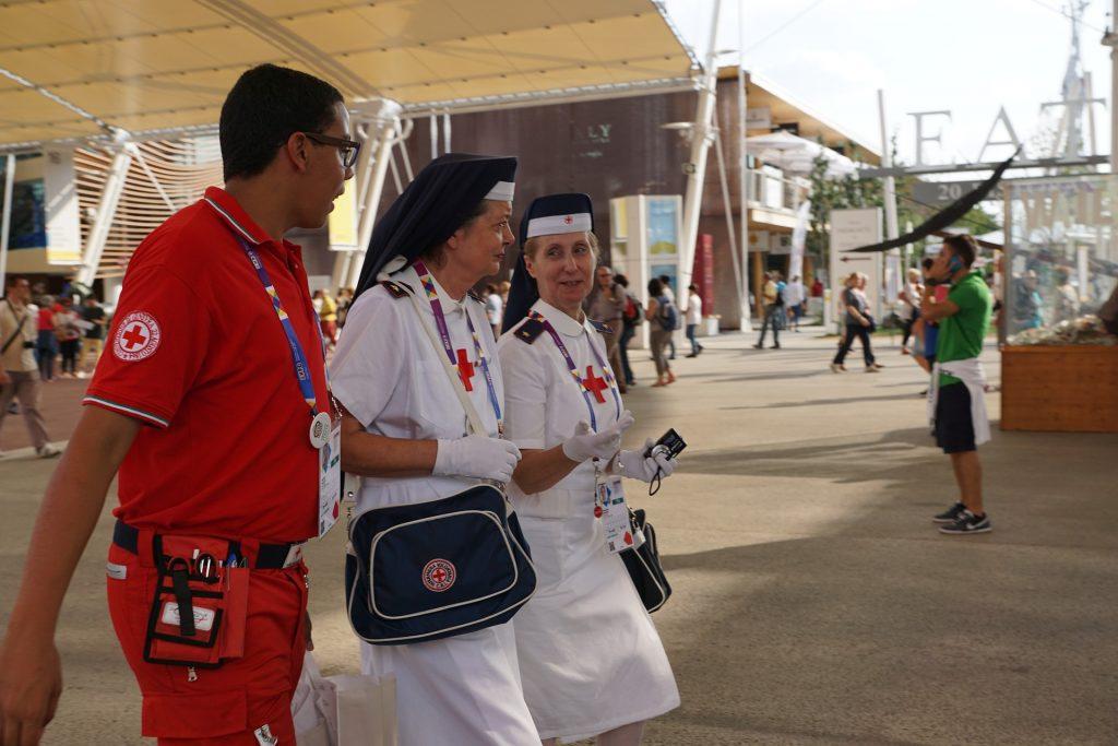 role of the professional nurse