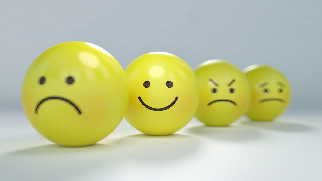 elements of emotional intelligence