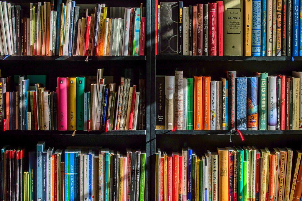 literature review elements