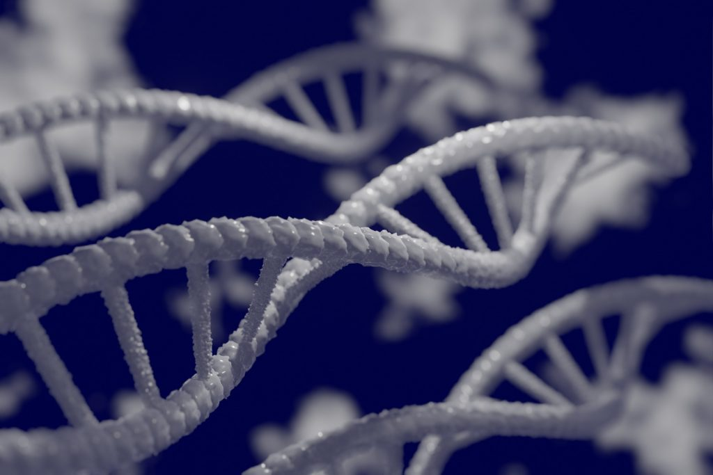 relationship of genetics and genomics