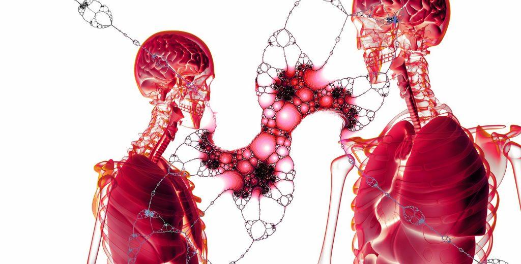 Mechanoreceptors respond to